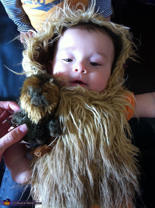 Headpiece and beard, Baby Chewbacca Costume