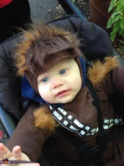 Baby Chewbacca Homemade Costume