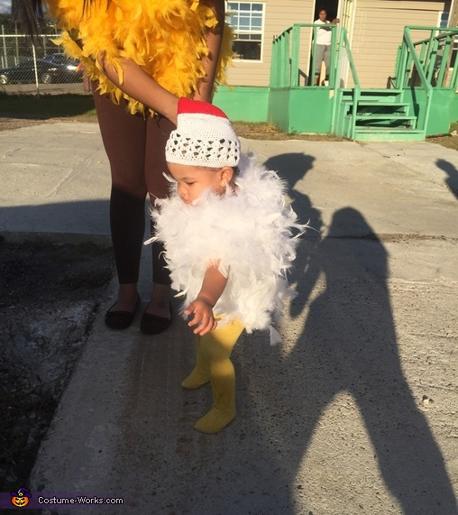 Baby Chick, Baby Chick and Chick Family Costume