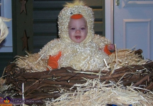 Baby Chick in the Nest Costume