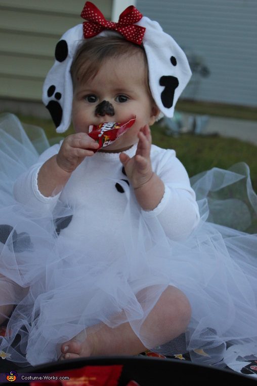 Candy-snatching Dalmatian, Baby Dalmatian Costume