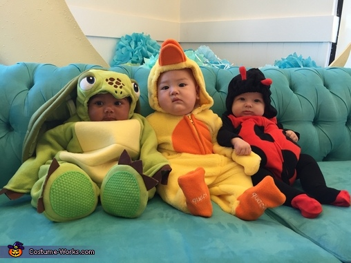 Best Friends, Baby Duck Costume