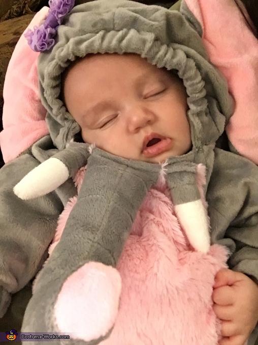A sleepy elephant!, Baby Elephant and the Safari Costume