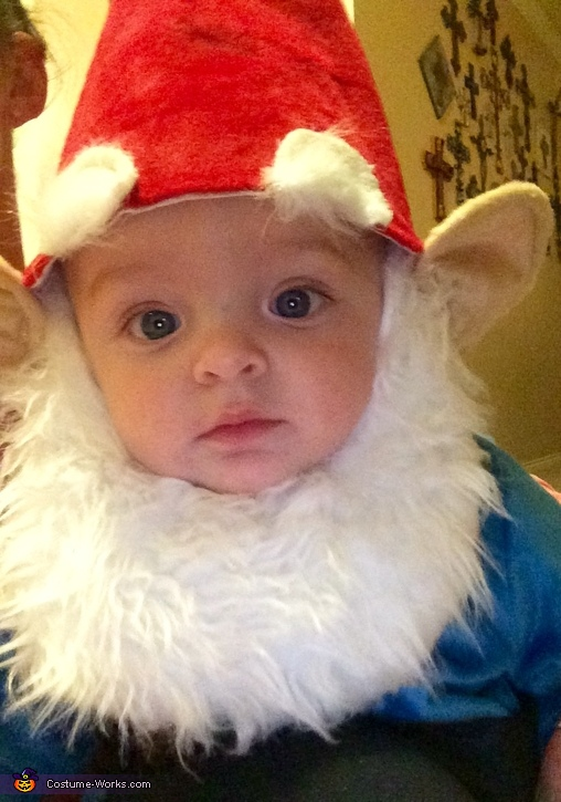 Cute Baby Garden Gnome Costume