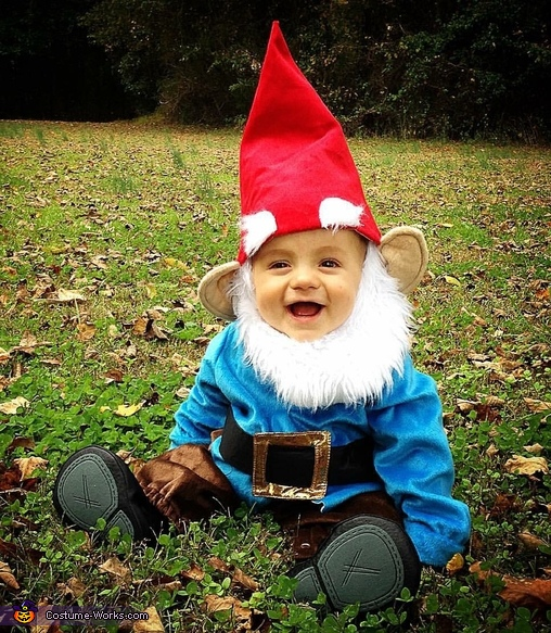 This Gnome's first Halloween Costume