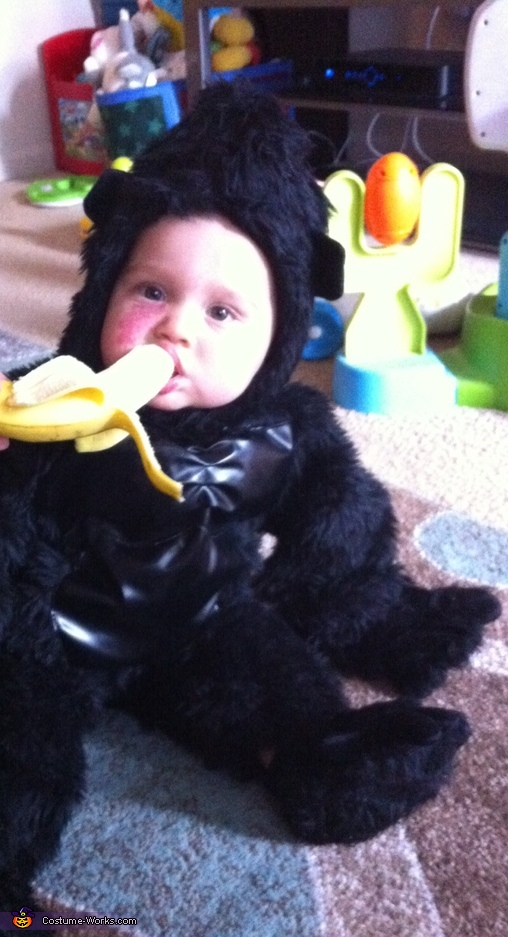 Baby Gorilla Costume