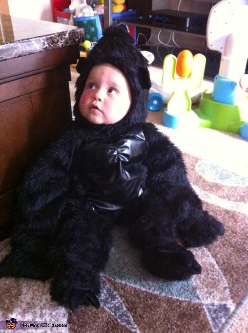 Little baby gorilla, Baby Gorilla Costume
