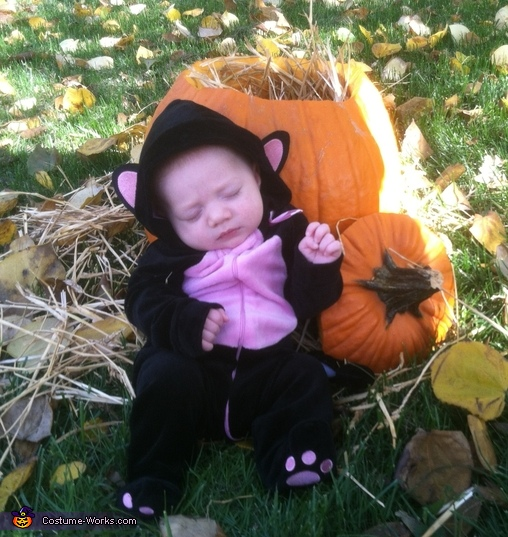 Sleeping baby kitty, Baby Kitty in a Pumpkin Costume