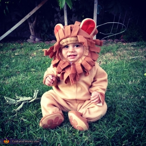 King of the jungle, Baby Lion Costume