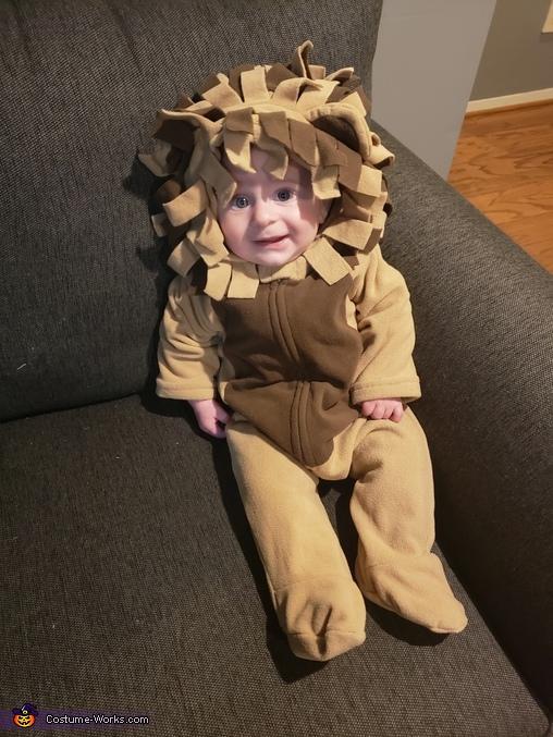 Baby Lion Homemade Costume