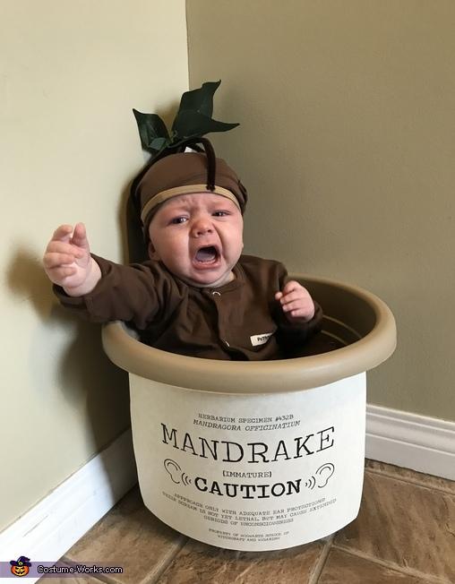 Mandrake, Baby Mandrake Costume