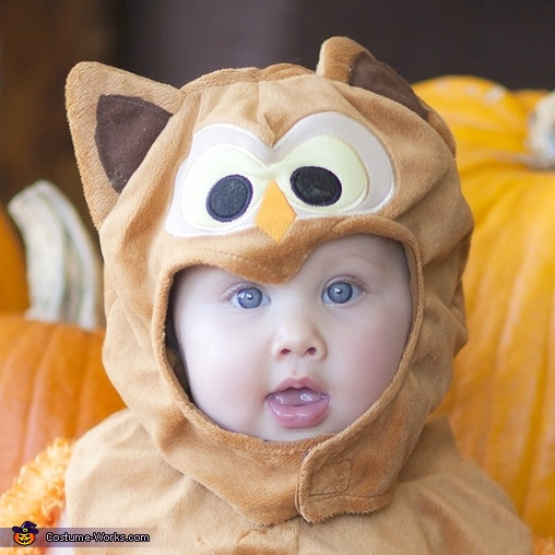 Close up , Baby Owl Costume