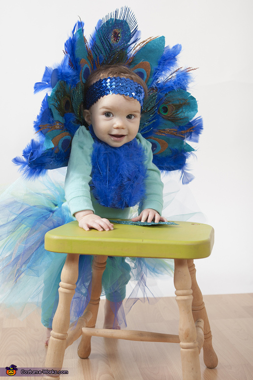 Baby Peacock Homemade Costume