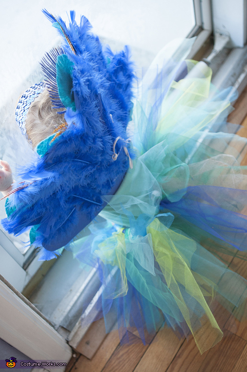 Baby Peacock Homemade Costume