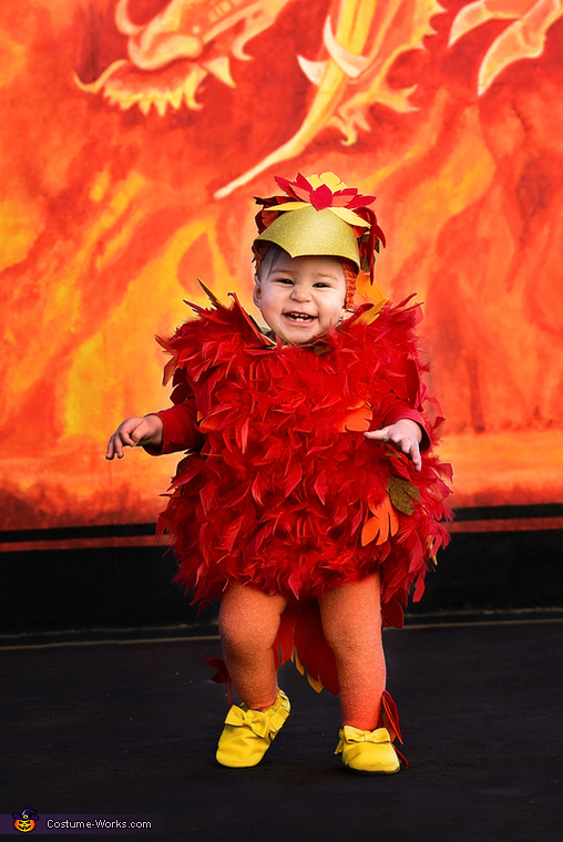 Baby Phoenix Costume