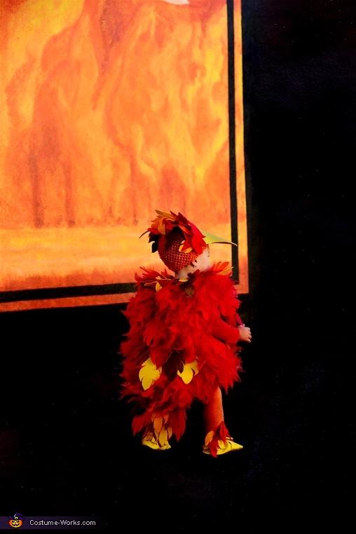 Baby Phoenix Homemade Costume