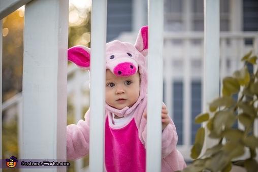 Peek-A-Boo, Baby Piggy Costume