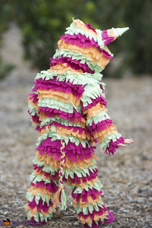 Baby Pinata Homemade Costume
