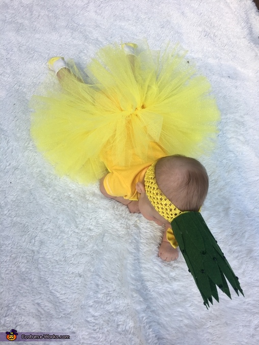 Baby Pineapple Homemade Costume