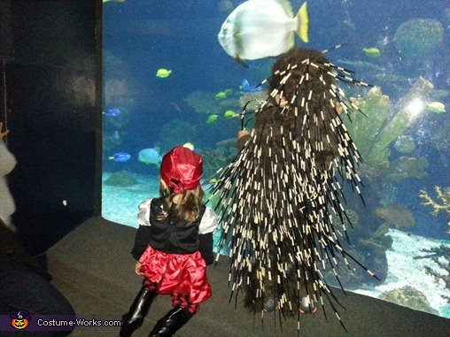 Veiw from the back #2, Baby Porcupine Costume