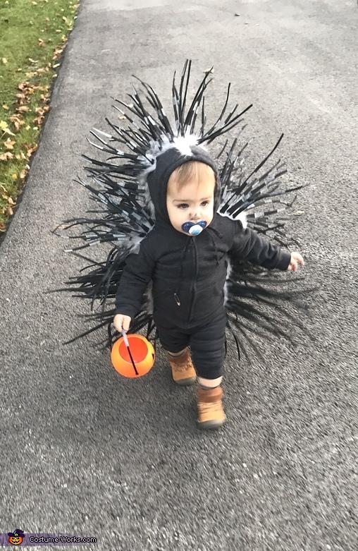 Baby Porcupine Costume