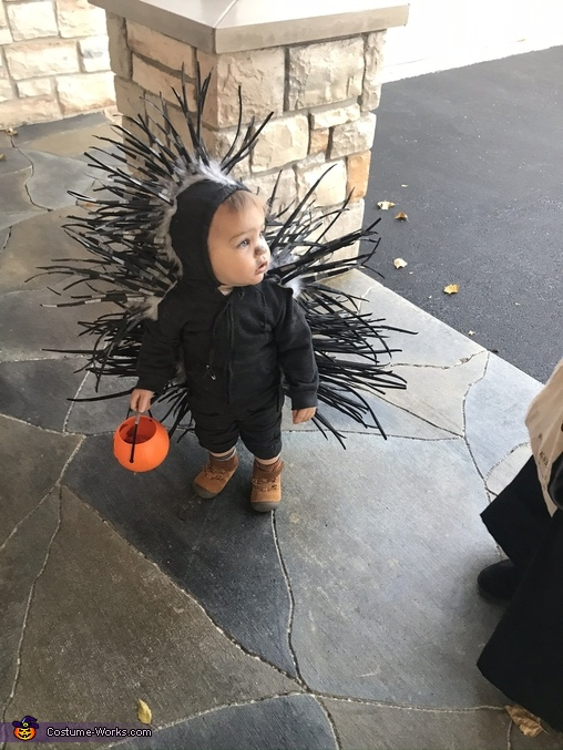 Waiting for candy, Baby Porcupine Costume