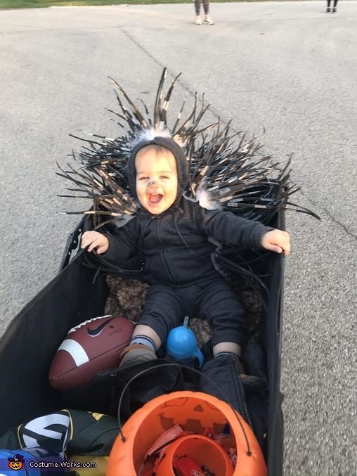 Wagon ride, Baby Porcupine Costume