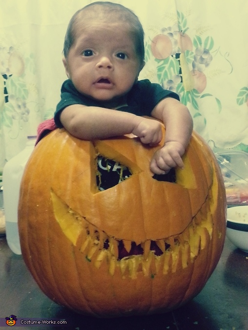The Baby Pumpkin Costume