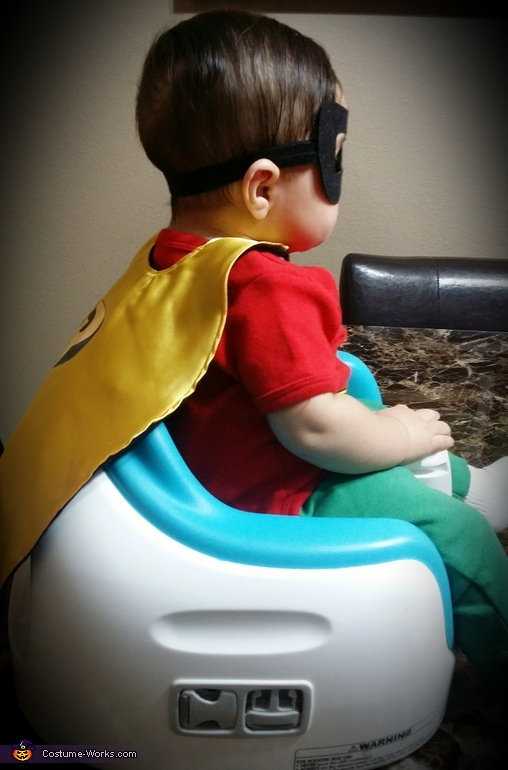 Baby Robin Homemade Costume
