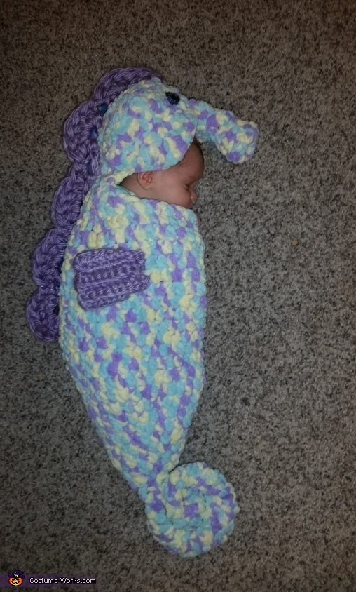 Baby Sea Horse Costume
