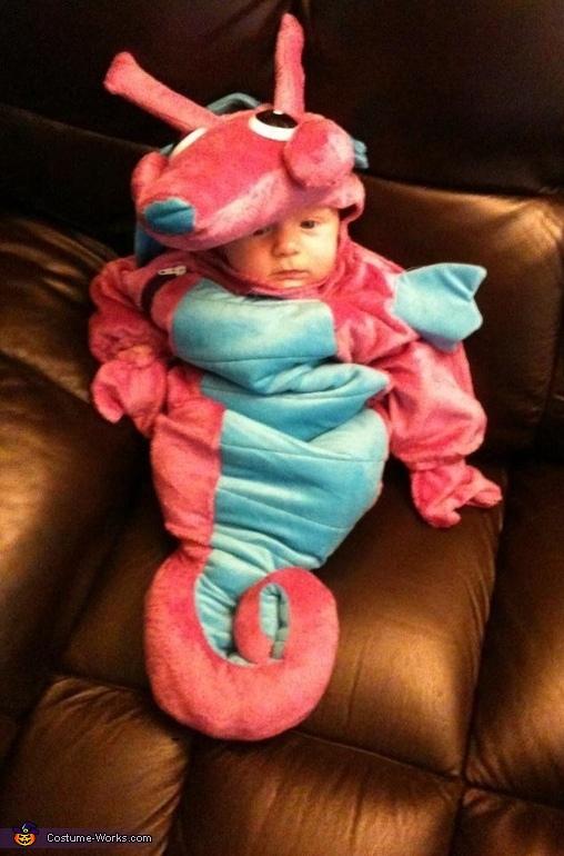 Baby Seahorse Costume