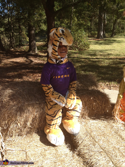Chilling tiger at the zoo!, Baby Tiger Costume