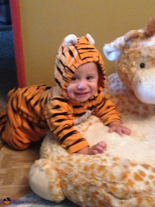 Baby Tiger Costume