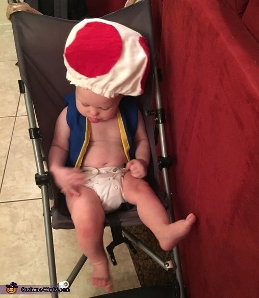 In the stroller with just diaper, Baby Toad Costume