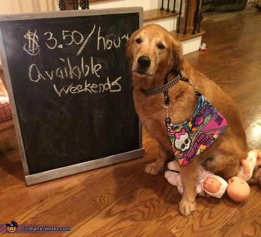 Babysitter Costume