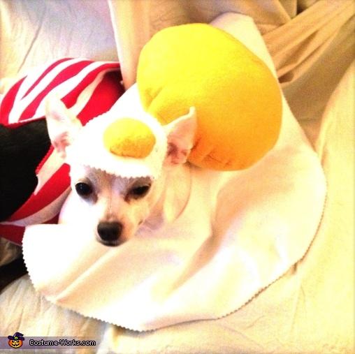 Queso - The Eggs, Bacon & Eggs Costume