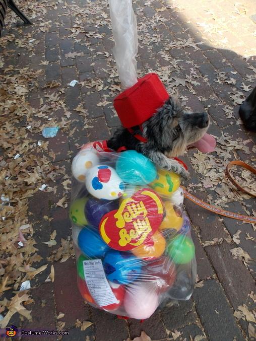Bag of Jelly Beans Homemade Costume