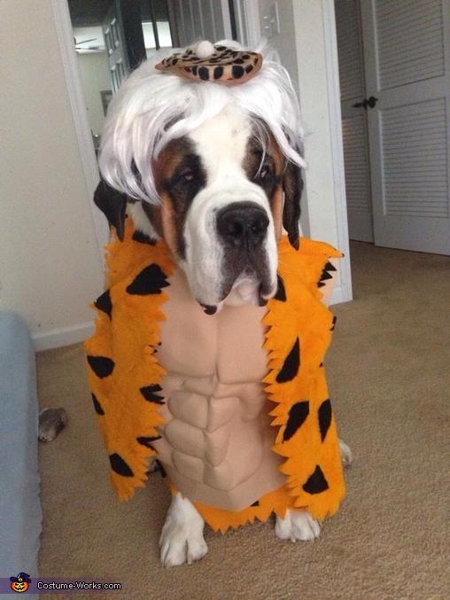 Bam Bam Dog Costume