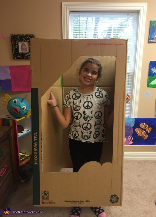 Just starting out, Barbie in a Box Costume