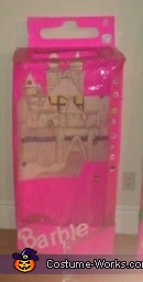 Barbie Princess in the Box Costume