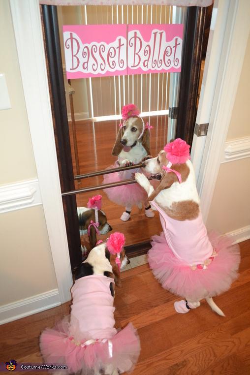 Basset Ballerinas Costume