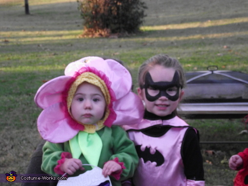Batgirl and Pansy Costume