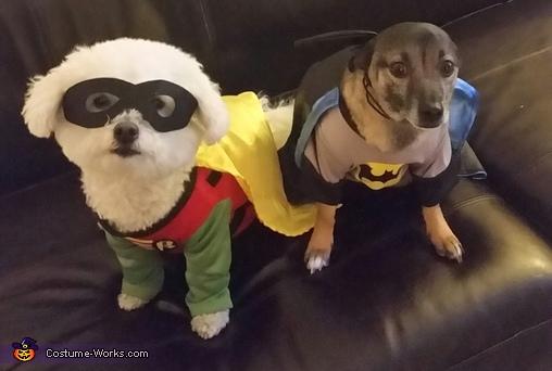 Batman and Robin Costume