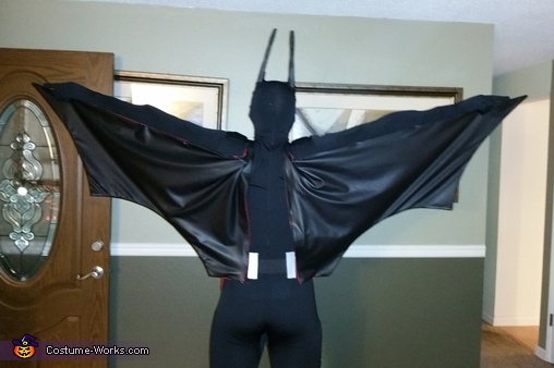 back side shot, Batman Beyond Costume