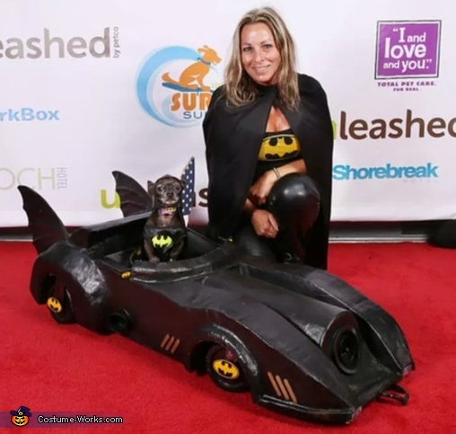 Batman in the Batmobile DogCostume