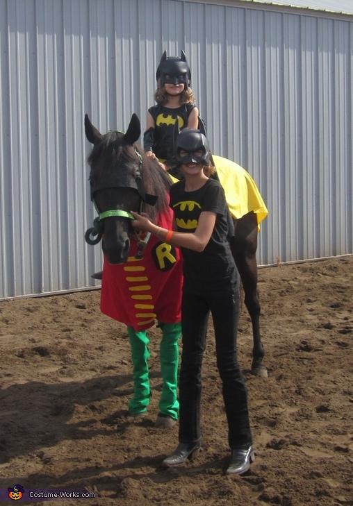 Batman & Robin Costume