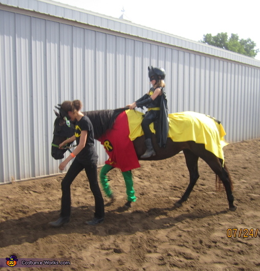 Batman & Robin Homemade Costume