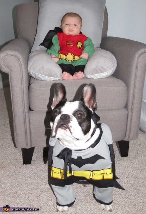 Batman & Robin Costume