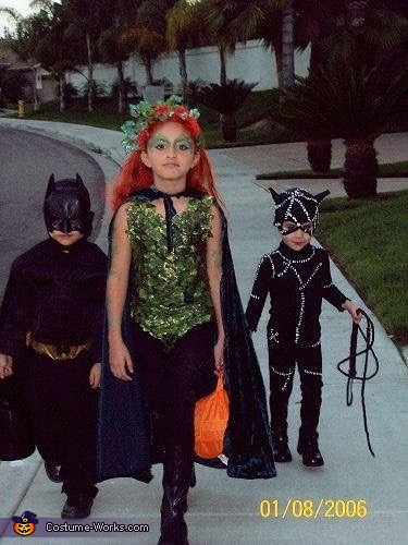 Batman, Poison Ivy & Catwoman Costume