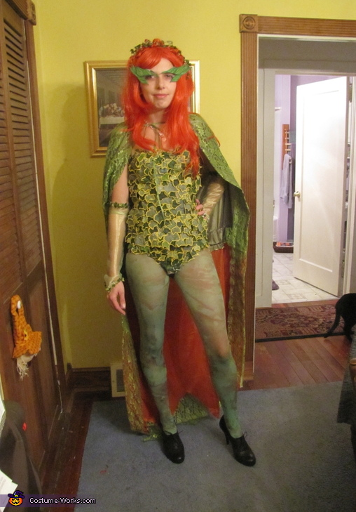 Batman, Robin and Poison Ivy Homemade Costumes